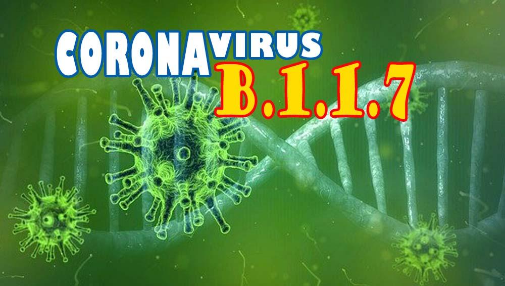 MUTASI VIRUS CORONA B.1.1.7 MENYEBAR, PENANGANANNYA AKAN LEBIH SULIT